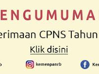 Informasi Seleksi CPNS Nasional Tahun 2017 Periode 2