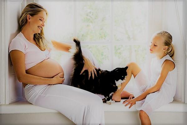 Cara Aman Memelihara hewan Saat Hamil