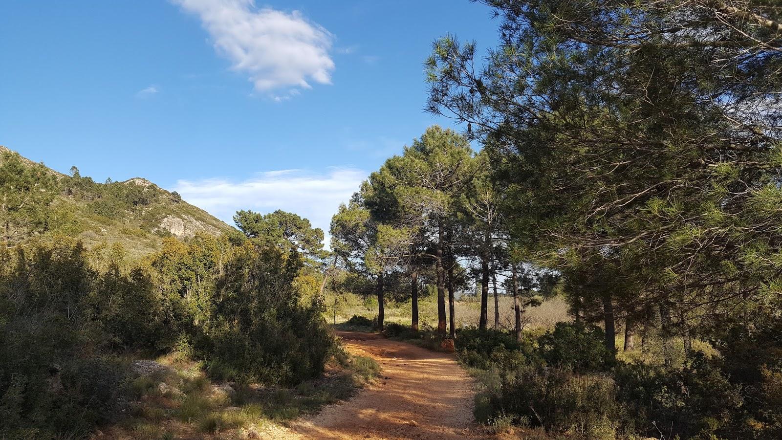 Cycling in Valencia - Pla de la Vinyavella, Quatretonda, Vall d'Albaida