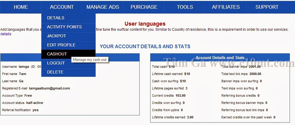 Manage my cash out Hitlink traffic website