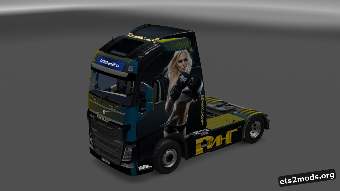 Everlast Skin for Volvo 2013