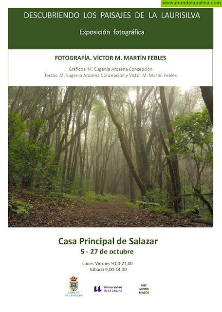 El Cabildo presenta una exposición fotográfica dedicada a los paisajes de la laurisilva