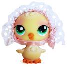 Littlest Pet Shop Collectible Pets Chick (#284) Pet