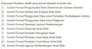 Download Contoh Format Penilaian Kurikulum 2013 PAUD (TK KB TPA)
