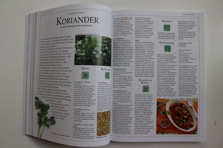 Buchvorstellung-Kräuter-Steiermarkgarten