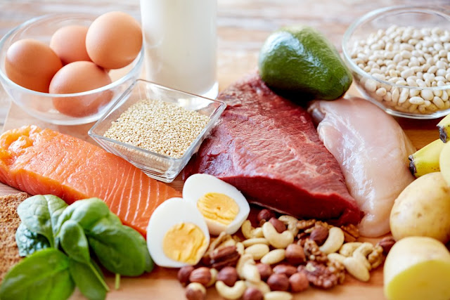 Why You Need Protein