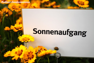 Blumenhalle IGA