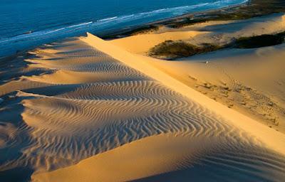 Jenis Gumuk Pasir (Sand Dune)