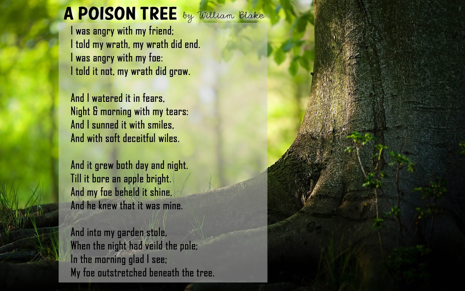 A poison tree poetry essay