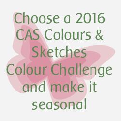 http://cascoloursandsketches.blogspot.com/2016/12/challenge-202-seasonal-colours.html