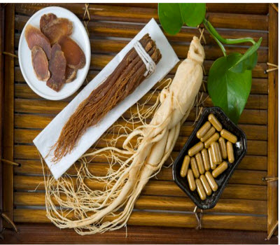 Roots of Panax ginseng