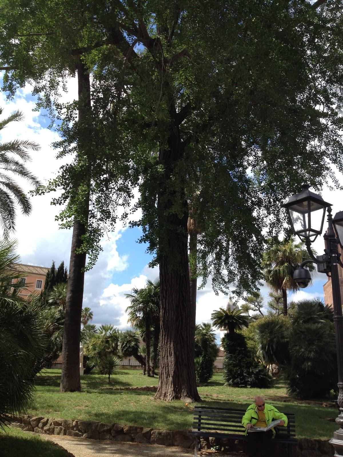 Scuola Francese Roma Villa Borghese