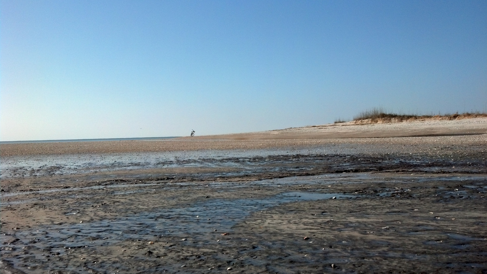 Looking South At Low Tide From Jeremy Inslet