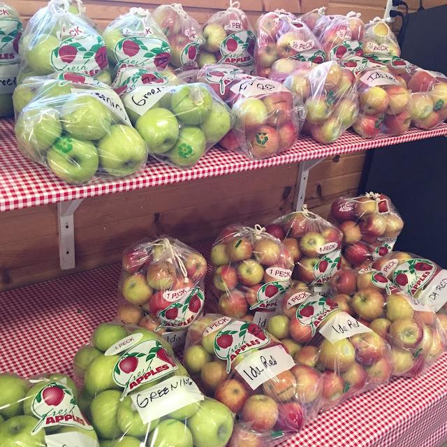 Apple Hut grows 17 varieties of apples