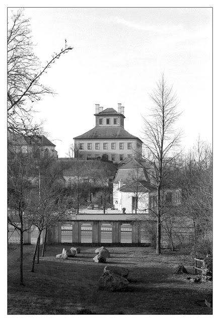 Blick zur Moritzburg vom Unteren Johannisfriedhof in Zeitz