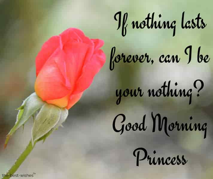 good morning sms to princess