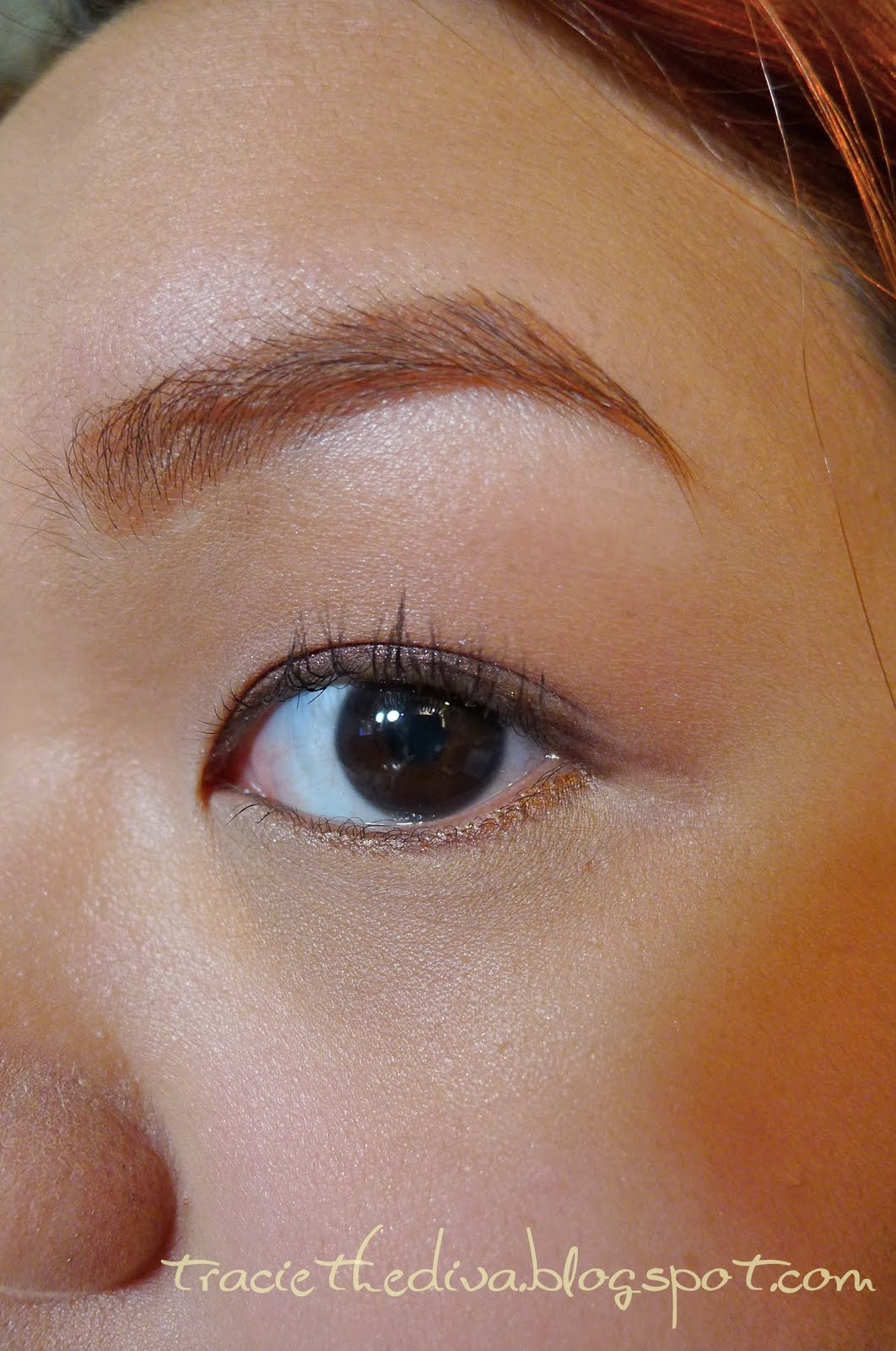 Traciethediva: Shopping Guide: Brow Quest: Nichido Brow ...