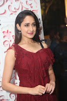 Pragya Jaiswal in Stunnign Deep neck Designer Maroon Dress at Nakshatram music launch ~ CelebesNext Celebrities Galleries 090.JPG