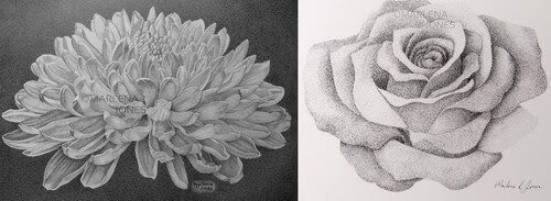 00-Marlena-Jones-Stippling-Flowers-and-a-Conch-Shell-www-designstack-co