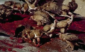 4 Ritual Kematian Paling Mengerikan