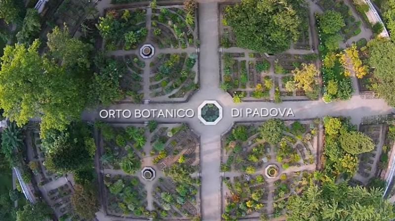 vista aérea del jardín botánico de la universidad de Padua