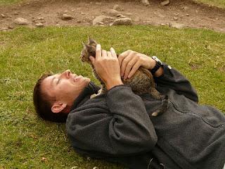Cara Merawat kucing Anggora dengan Benar Lengkap untuk Pemula