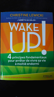 http://www.eyrolles.com/Loisirs/Livre/wake-up-9782212558425