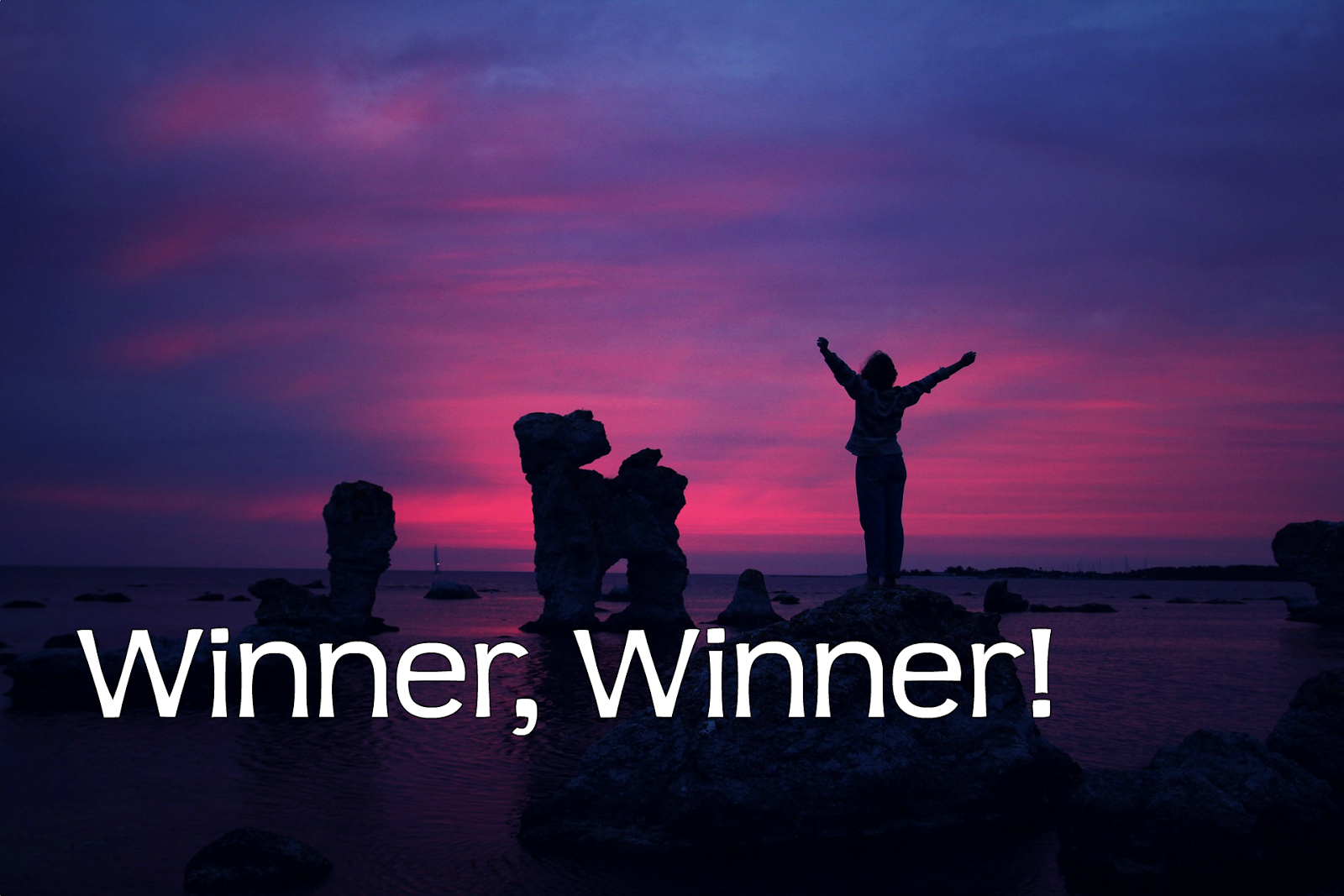 Check Out This Awesome Winner Winner Chicken Dinner: Meeshie's World