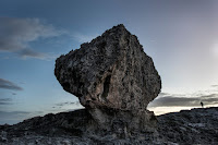 A massive boulder on a coastal ridge in North Eleuthera, the Bahamas. A new research paper claims it was likely moved there by powerful storms during the last warm period of Earth history, 120,000 years ago, and warns that such stormy conditions could recur because of human emissions of greenhouse gases. (Credit: Charles Ommanney/The Washington Post, via Getty Images) Click to Enlarge.