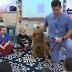 Οδοντίατρος και σκύλος μαζί στο σχολείο...