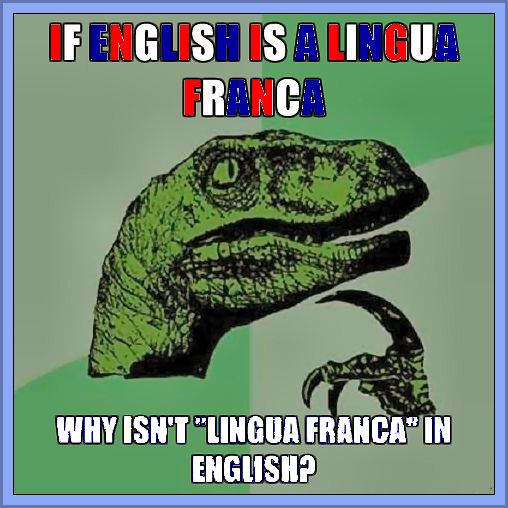 ?why english as a lingua franca? essay This essay narrated the reasons that why english has really important to understand why without knowing it we are not able to communicate our point of view to other people of the world in my opinion, now it is impossible to use any other language as a global language.