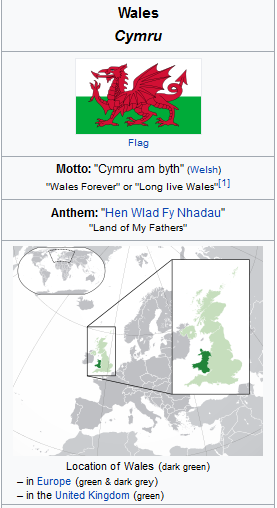 Well Done Wales in Welsh