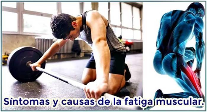 Síntomas de la fatiga muscular y cómo evitarlos