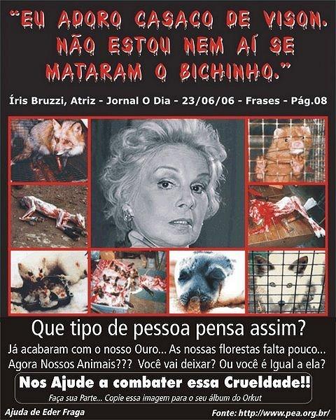 56c0f5f2d Protetores dos Animais de Macaé - PAM/ Eliana Petrelli: Uso de pele ...