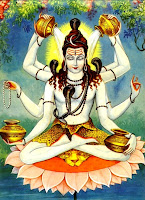 Maha Mrityunjaya Stotra, Mritunjaya stotra, Shiva, eight hands, rudrabhishek, Rudra Abhishek, Amrit Kalash, Padma Ashan, Kamal Ashan, Pink Lotus, Lotus Posture