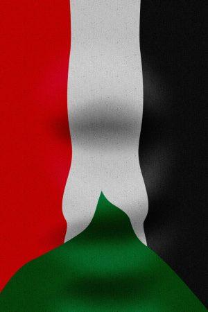 صور علم السودان طولية
