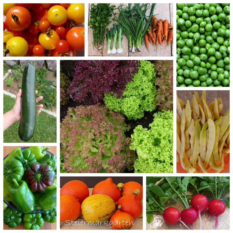 Gemüseernte-Collage-Steiermarkgarten