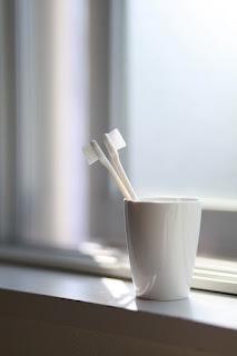 3 fungsi dan manfaat sikat gigi bekas