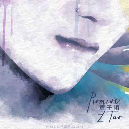 Z.Tao – Promise – Single (ITUNES PLUS AAC M4A)