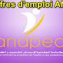 Les Offres d'emploi ANAPEC