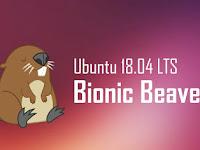 Repository Ubuntu 18.04 Bionic Beaver