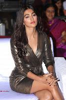 Pooja Hegde looks glamarous in deep neck sleevless short tight golden gown at Duvvada Jagannadham thank you meet function 059.JPG