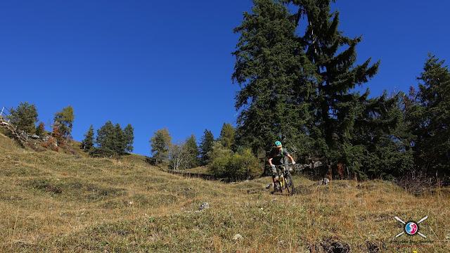 Mountainbiketour Nachbergalm