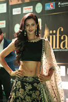 Shu Aiyappa Spicy Black CHoli Low Rise Ghagra ~  Exclusive 47.JPG
