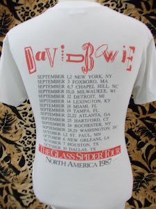 DAVID TOUR 1987
