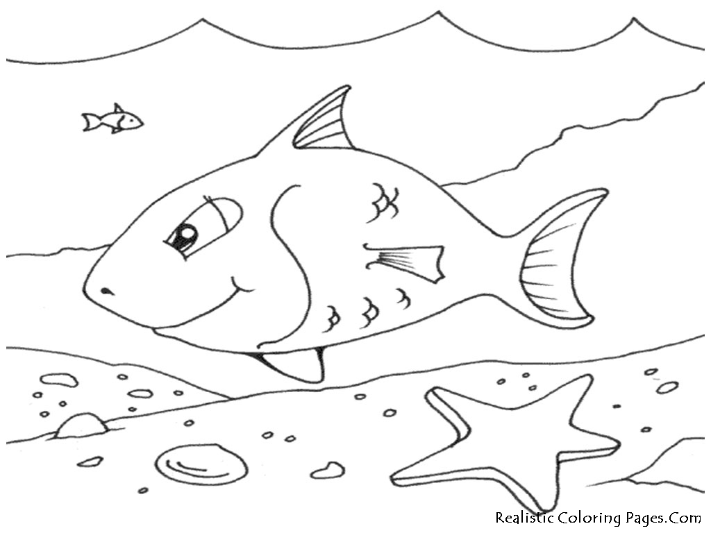 Coloring Pages Ocean Fish Realistic Sea Life Printable