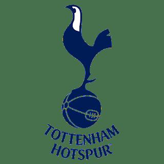 Logo Tottenham Hotspur DLS
