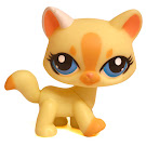 Littlest Pet Shop Small Playset Cat (#1546) Pet