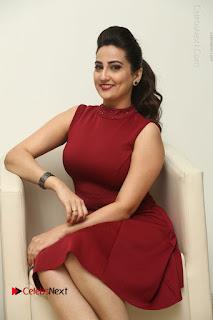 Telugu Tollywood Anchor Manjusha Pos in Red Short Dress  0083.JPG
