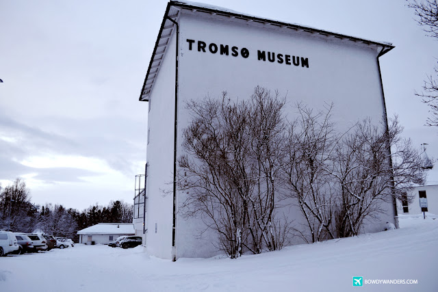 bowdywanders.com Singapore Travel Blog Philippines Photo :: Norway :: Tromso University Museum: Find Your Comprehensive Aurora Borealis Insider Guide Here